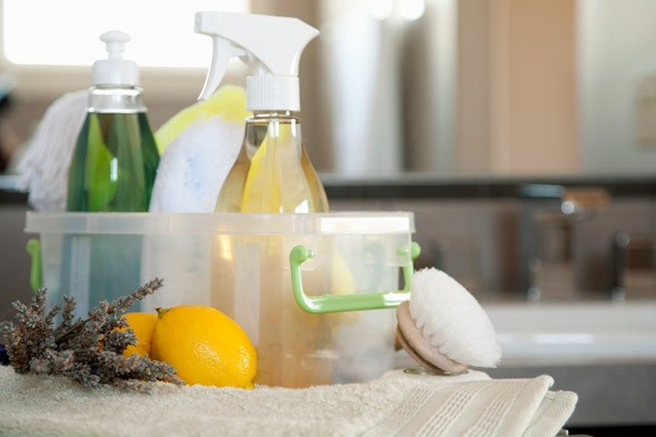 cleaning-supplies-green-eco-home-products-590jn051010-1273507430
